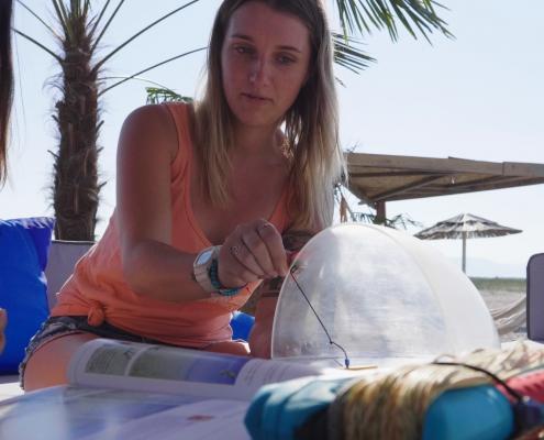 kitesurfen, montenegro, vdws, kitesurfen lernen, kitschule